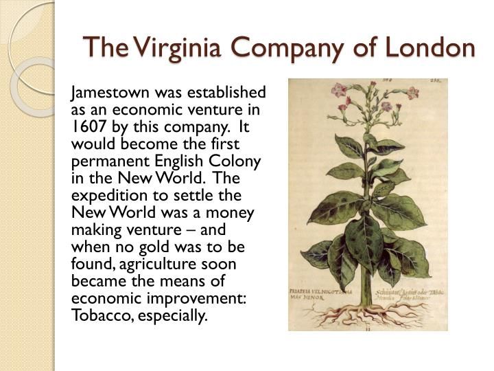 The virginia company of london