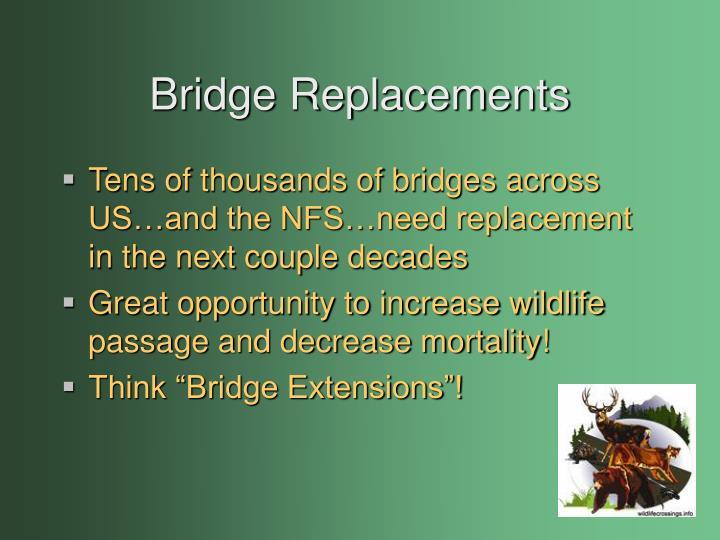 Bridge Replacements