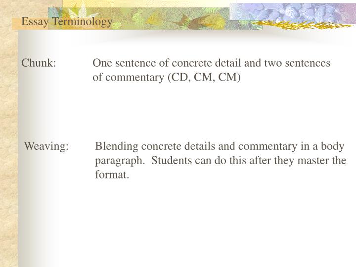 Essay Terminology