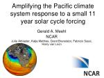 amplifying the pacific climate system response to a small 11 year solar cycle forcing