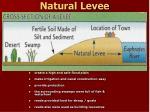 natural levee