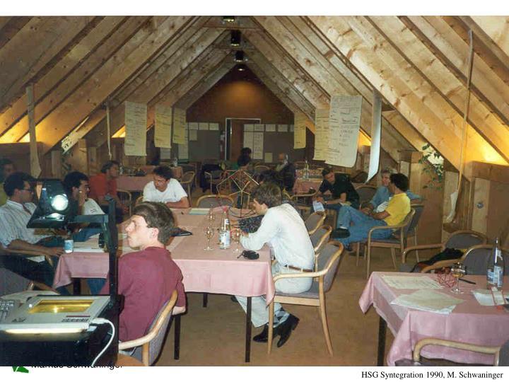 HSG Syntegration 1990, M. Schwaninger