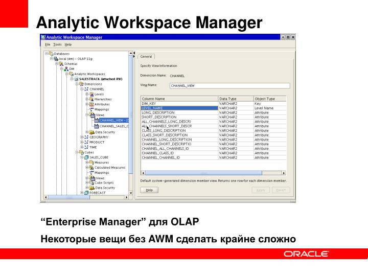 Analytic Workspace Manager