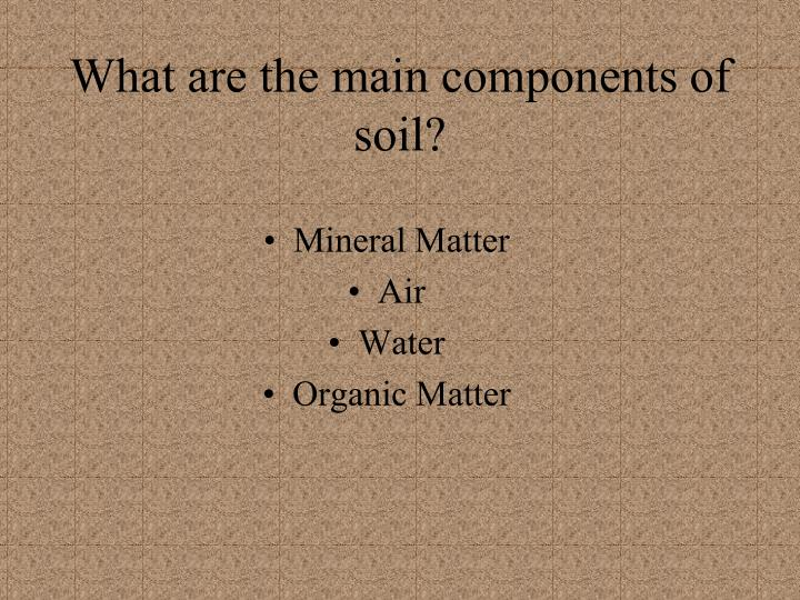 What are the main components of soil?
