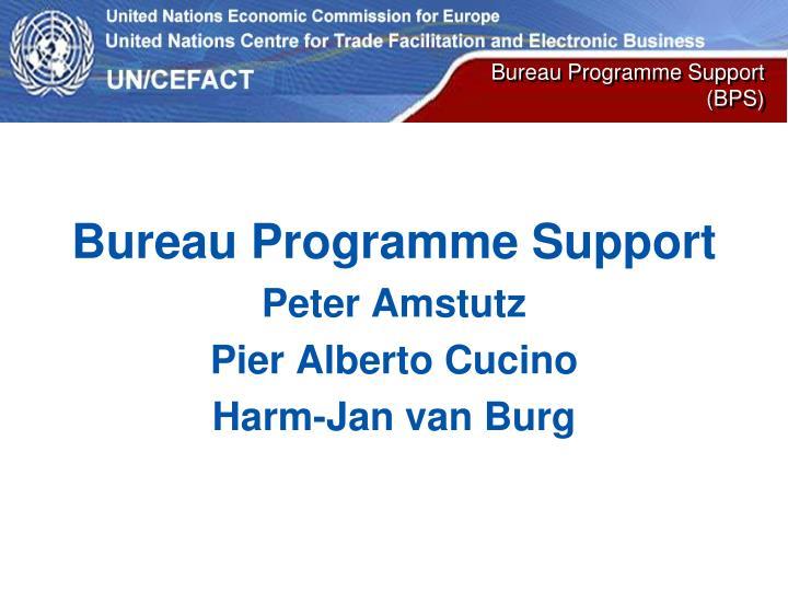 Bureau Programme Support (BPS)