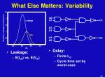 what else matters variability
