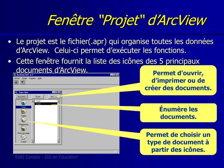 """Fenêtre """"Projet"""" d'ArcView"""