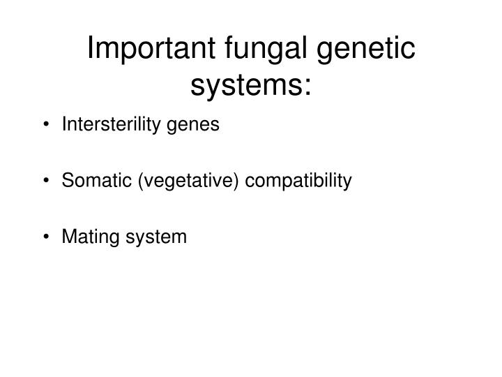 Important fungal genetic systems: