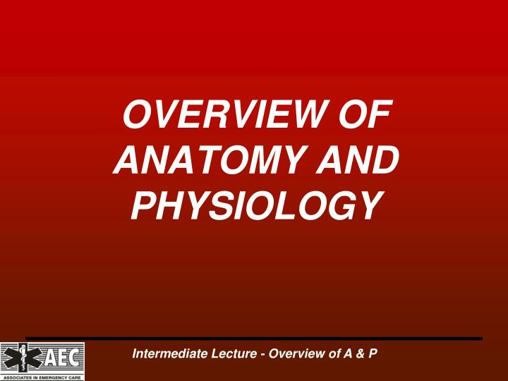 overview of anatomy and physiology n.