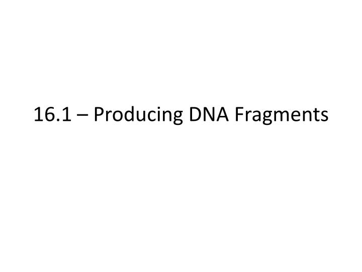 16 1 producing dna fragments n.