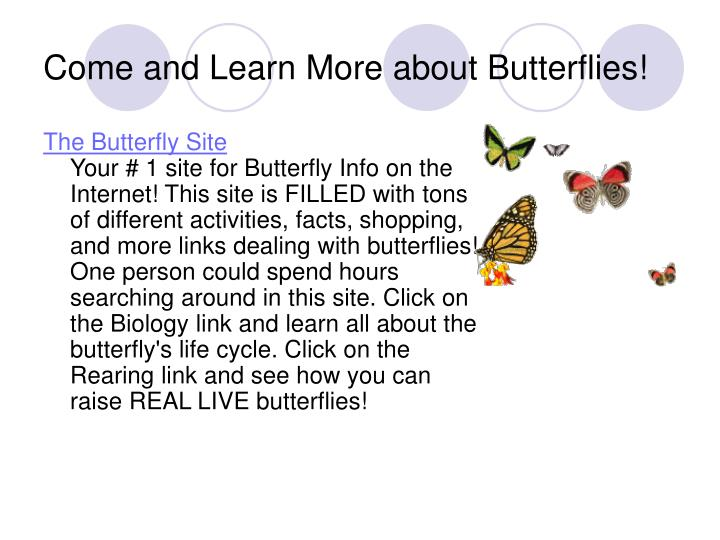 Come and Learn More about Butterflies!