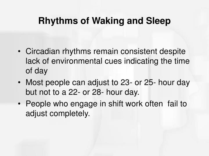 Rhythms of Waking and Sleep