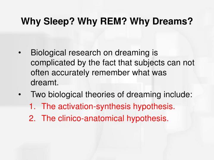 Why Sleep? Why REM? Why Dreams?