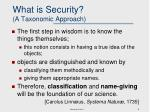 what is security a taxonomic approach