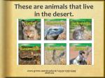 these are animals that live in the desert