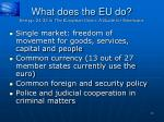 what does the eu do see pp 24 33 in the european union a guide for americans