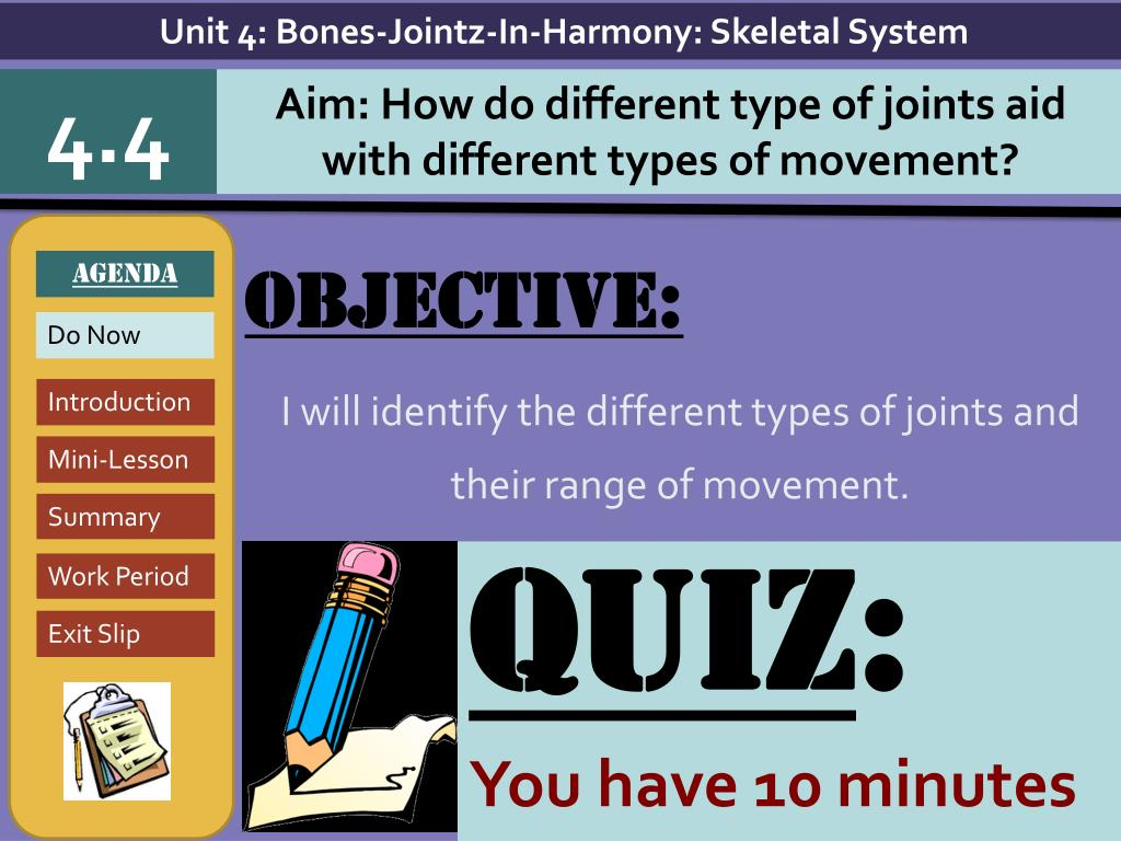 Ppt Objective I Will Identify The Different Types Of Joints And