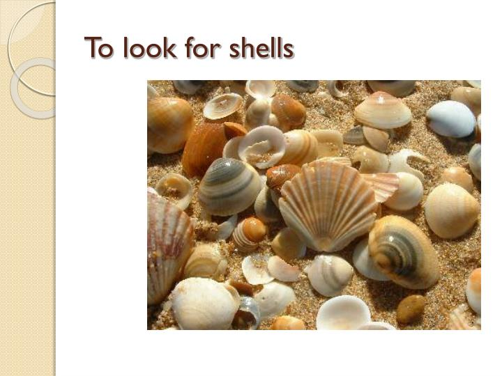 To look for shells