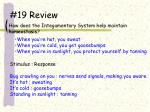 19 review