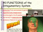 3 functions of the integumentary system