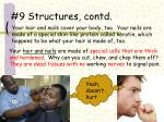 9 structures contd