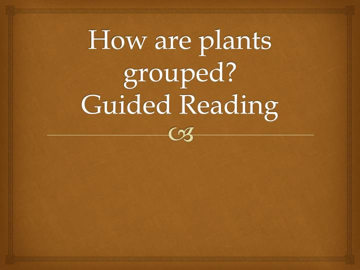 how are plants grouped guided reading n.
