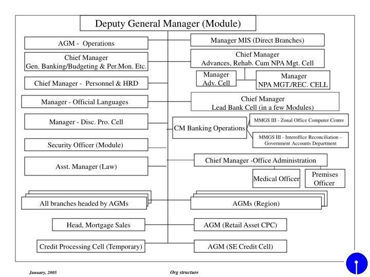 Deputy General Manager (Module)