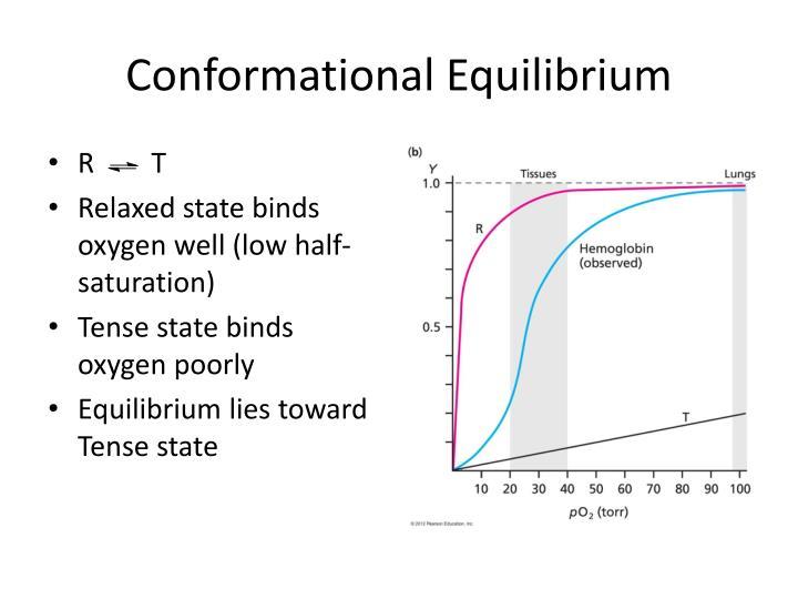 Conformational Equilibrium