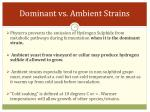 dominant vs ambient strains
