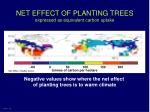 net effect of planting trees expressed as equivalent carbon uptake