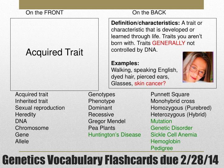 Genetics vocabulary flashcards due 2 28 14