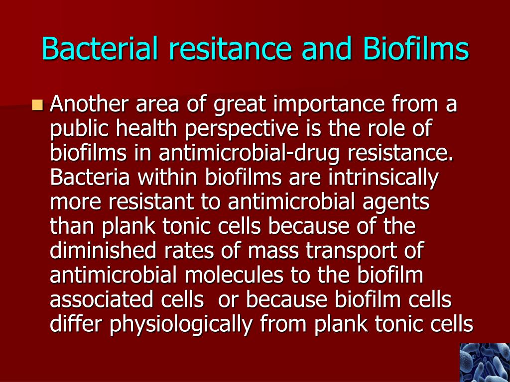PPT - Biofilms in Infection PowerPoint Presentation - ID:3090775