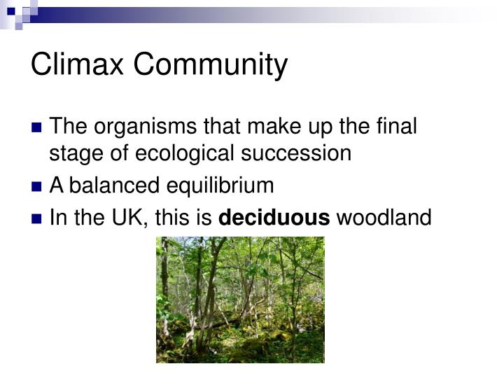 Ppt 7 ecological succession powerpoint presentation id3090994 climax community publicscrutiny Choice Image