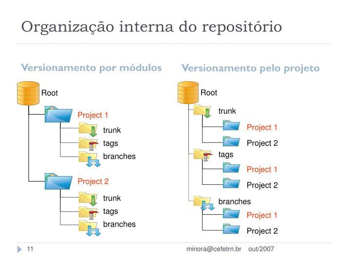 Organização interna do repositório