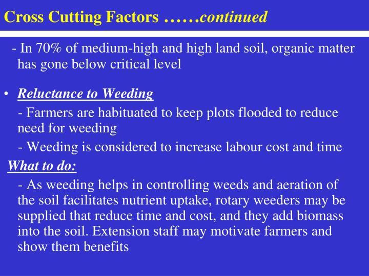 Cross Cutting Factors
