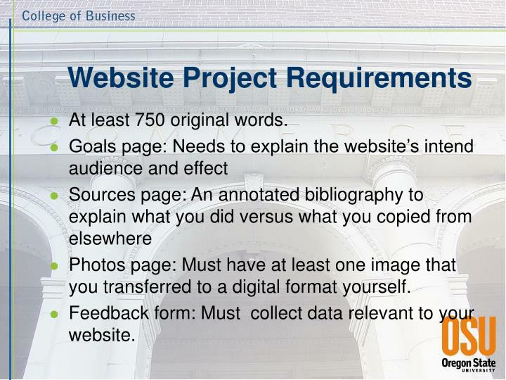 Website project requirements