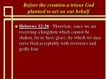 before the creation a triune god planned to act on our behalf11