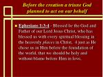 before the creation a triune god planned to act on our behalf2