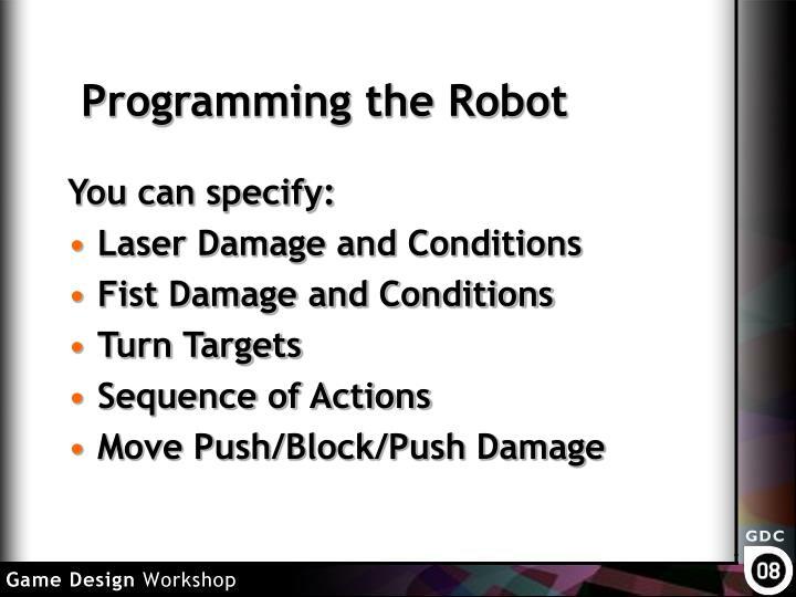 Programming the Robot