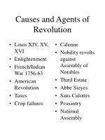 causes and agents of revolution