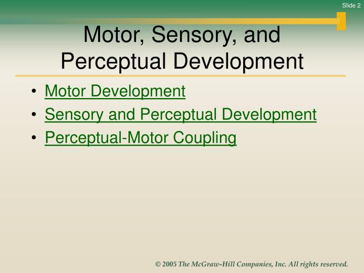Motor sensory and perceptual development