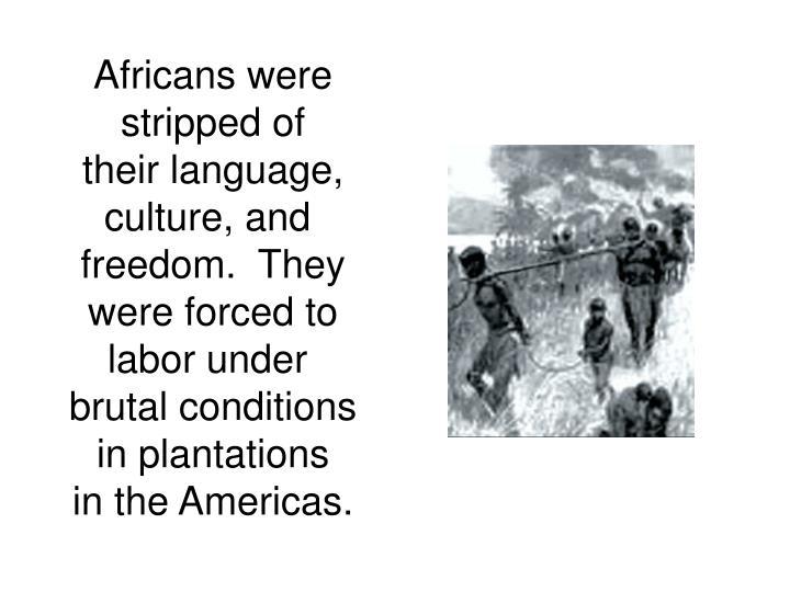 Africans were