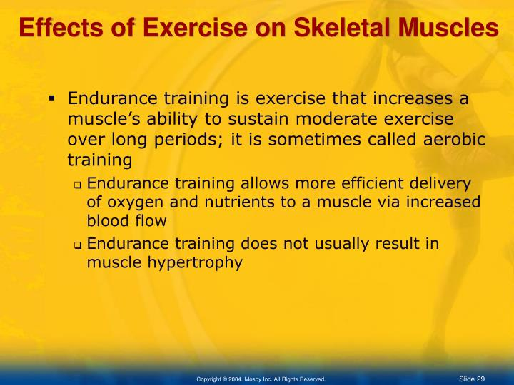 Effects of Exercise on Skeletal Muscles