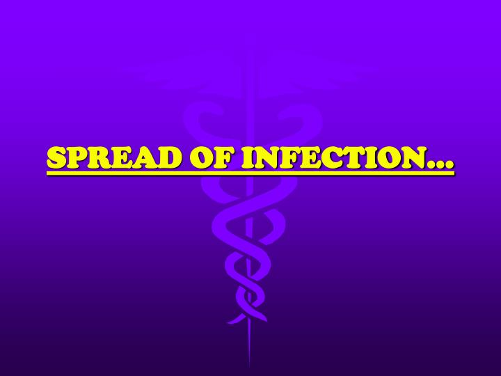 spread of infection n.