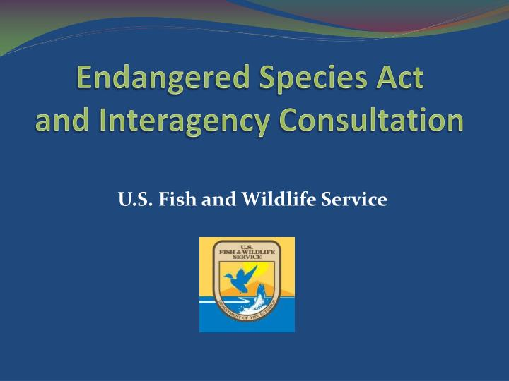 endangered species act and interagency consultation n.