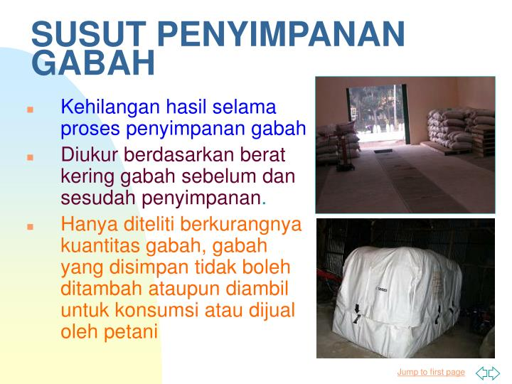 SUSUT PENYIMPANAN GABAH