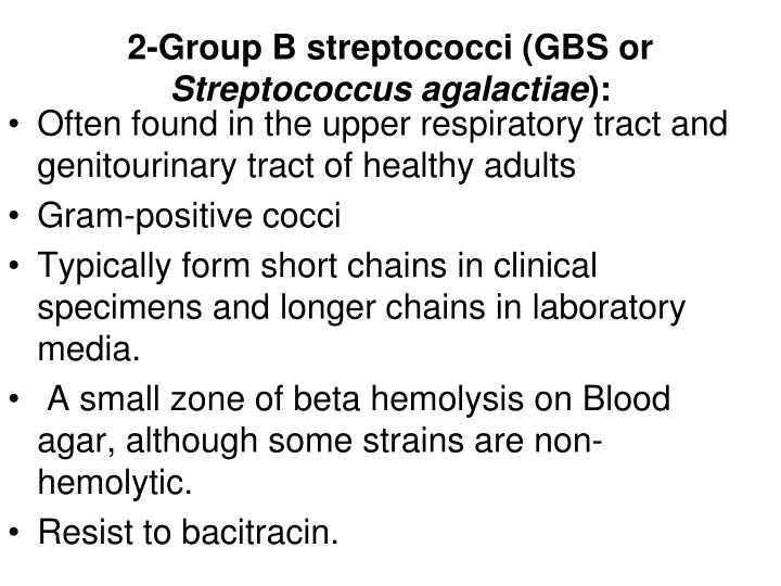 2-Group B streptococci (GBS or