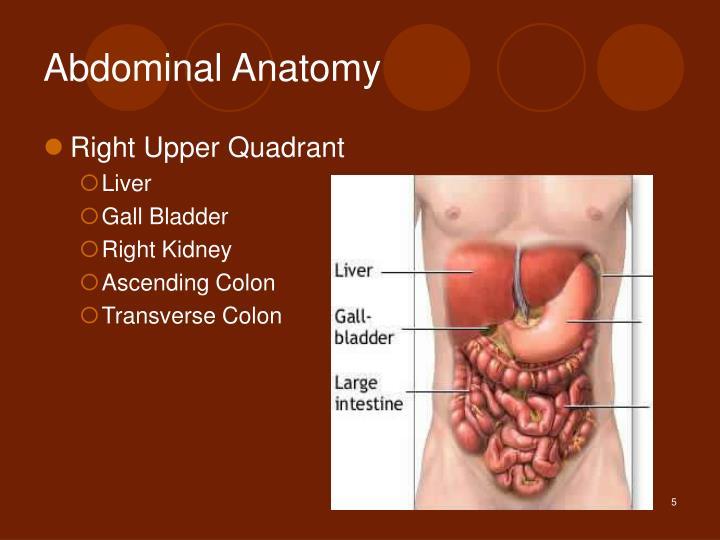 Ppt Abdominal Pain Powerpoint Presentation Id3094584