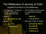 the wilderness a journey of faith2