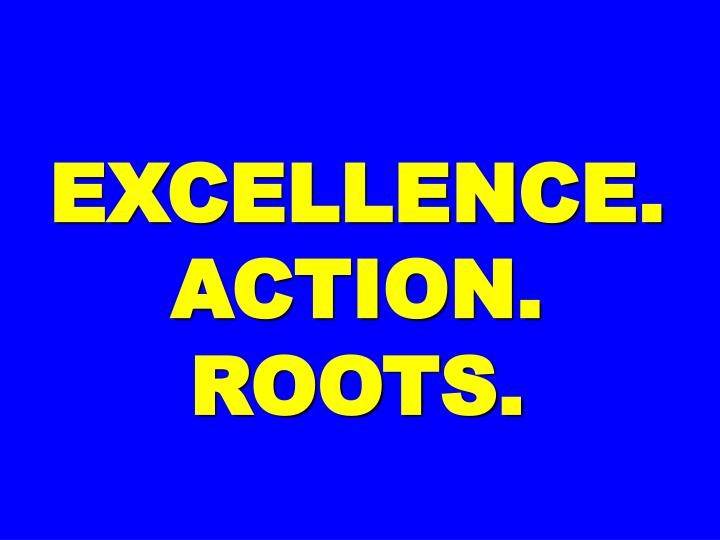 EXCELLENCE. ACTION.